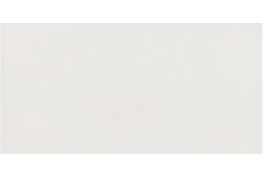 Flair White 500mm x 250mm